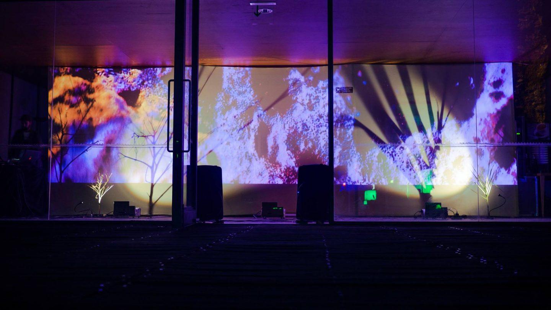 Malo - Photo Forte Festival 2017 - 02